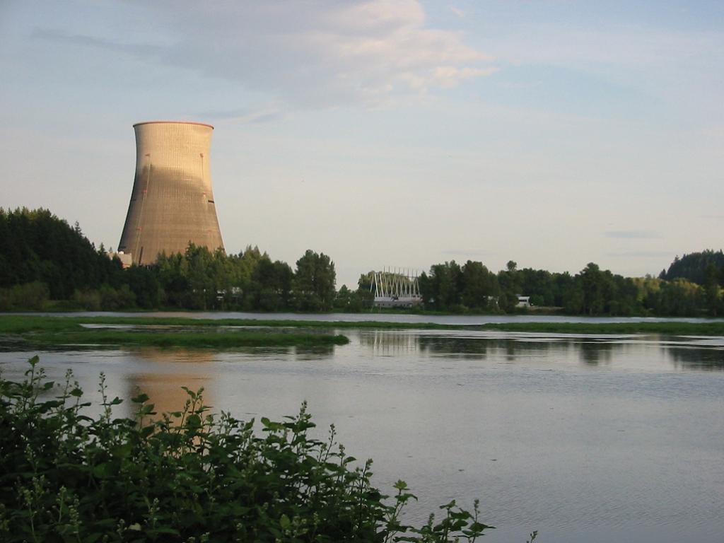 Nuclear Power Design